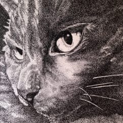 """11"""" x 14"""" Pen & Ink Drawing on Bristol Board Adapted from Personal Photograph"""