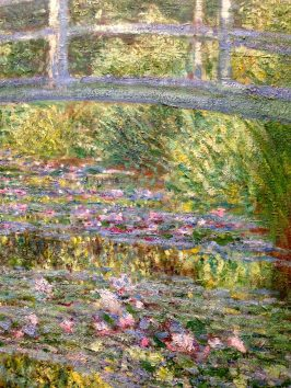 Close-up Monet