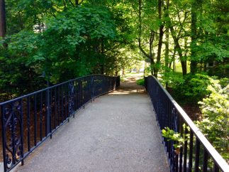 Bridge to Cranbrook Gardens