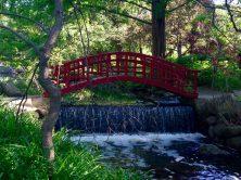 Red Bridge of Japanese Garden, Cranbrook