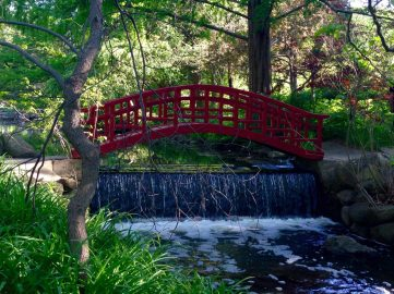 Red Bridge of Japanese Garden, Cranbrook