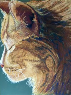 "9"" x 12"" Pastel Painting on Art Spectrum Colorfix Paper Adapted from Photograph"