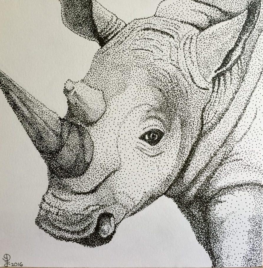 Detroit Zoo Rhinoceros