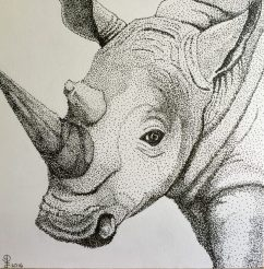 """6"""" x 6"""" Pen & Ink Drawing on Strathmore Bristol Board Adapted from Personal Photograph"""