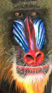 """12""""x30"""" Pastel on Canson Pastel Paper adapted from Photograph"""